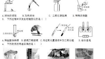 2019年黑龍江哈爾濱中考理綜真題及答案【圖片版】