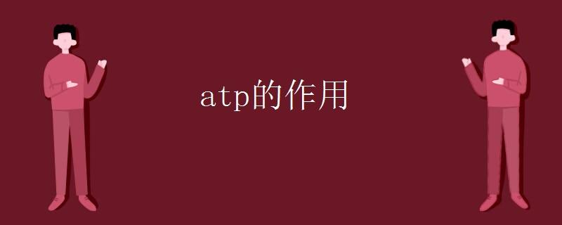 生物知识点:atp的作用