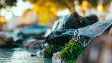 重庆旅游学校招生专业有哪些