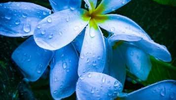 初中语文阅读有什么解题技巧?初中语文阅读解题技巧解析