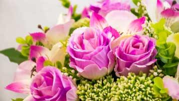 2018年黑龙江龙东地区中考语文试卷真题【图片版】