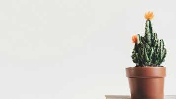 2016年鹤壁市重点高中排名