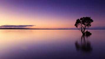 贵阳一中全国排名第11名 贵州省排行第1名