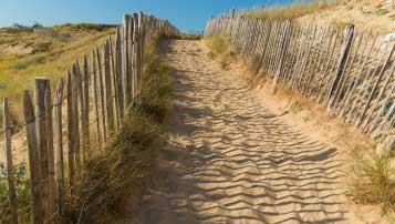 北京黄庄职业高中招生专业有哪些