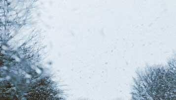 北京八一农业机械化学校招生专业有哪些