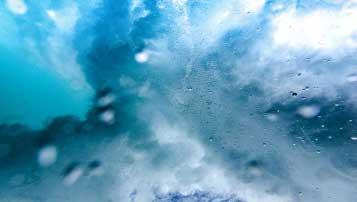 2017届上海市实验学校二模语文试题